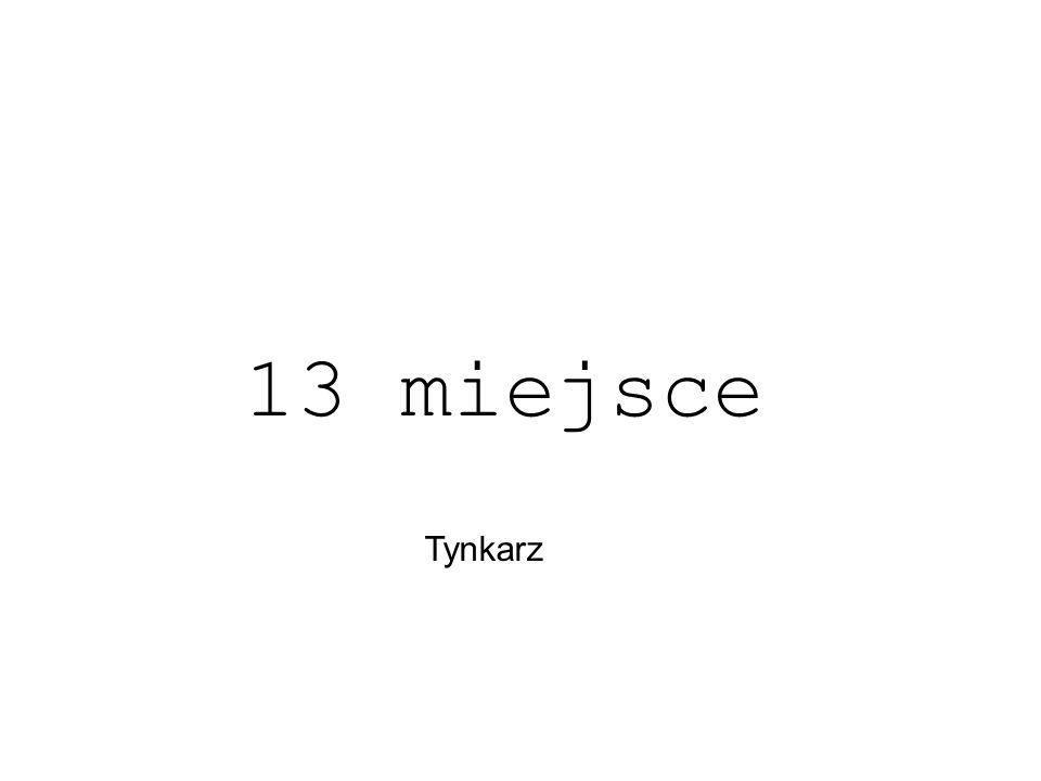 13 miejsce Tynkarz
