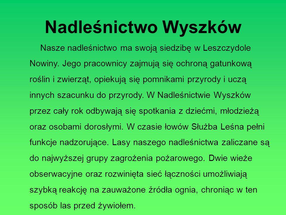 Nadleśnictwo Wyszków Nasze nadleśnictwo ma swoją siedzibę w Leszczydole Nowiny. Jego pracownicy zajmują się ochroną gatunkową roślin i zwierząt, opiek