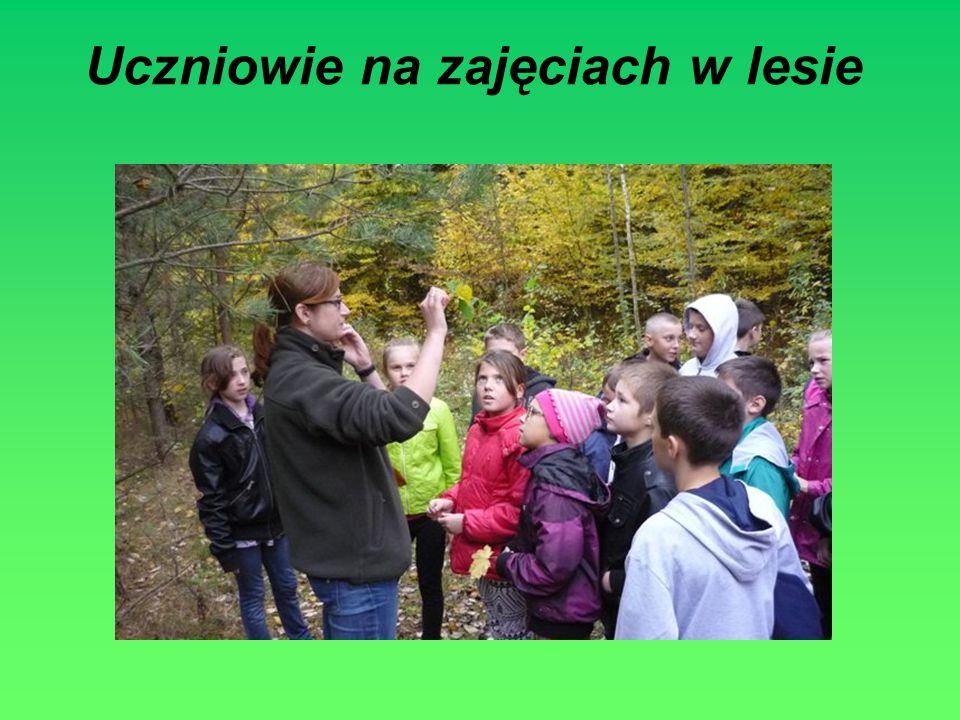 Uczniowie na zajęciach w lesie