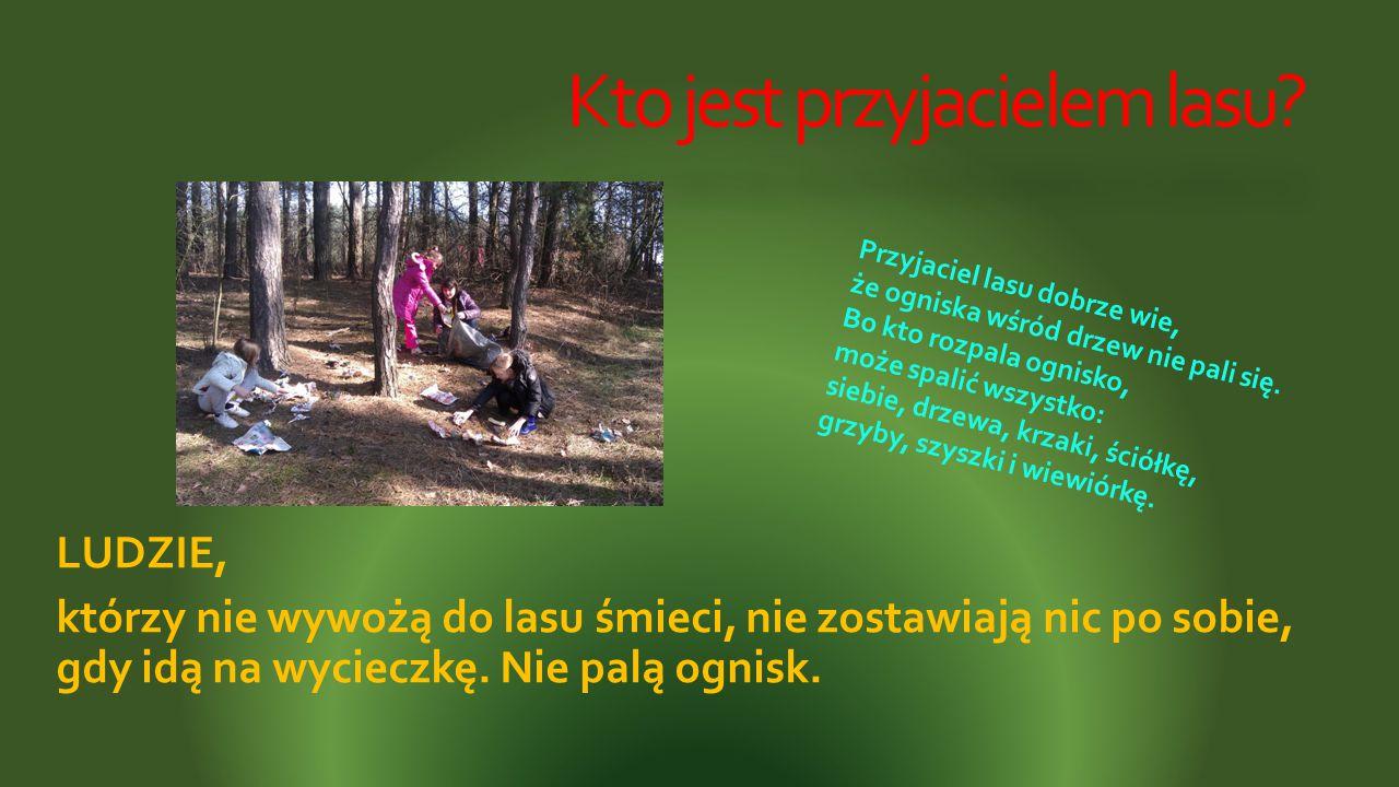 Kto jest przyjacielem lasu? LUDZIE, którzy nie wywożą do lasu śmieci, nie zostawiają nic po sobie, gdy idą na wycieczkę. Nie palą ognisk. Przyjaciel l