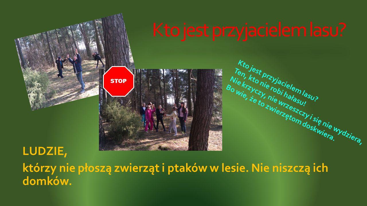 Kto jest przyjacielem lasu? LUDZIE, którzy nie płoszą zwierząt i ptaków w lesie. Nie niszczą ich domków. Kto jest przyjacielem lasu? Ten, kto nie robi