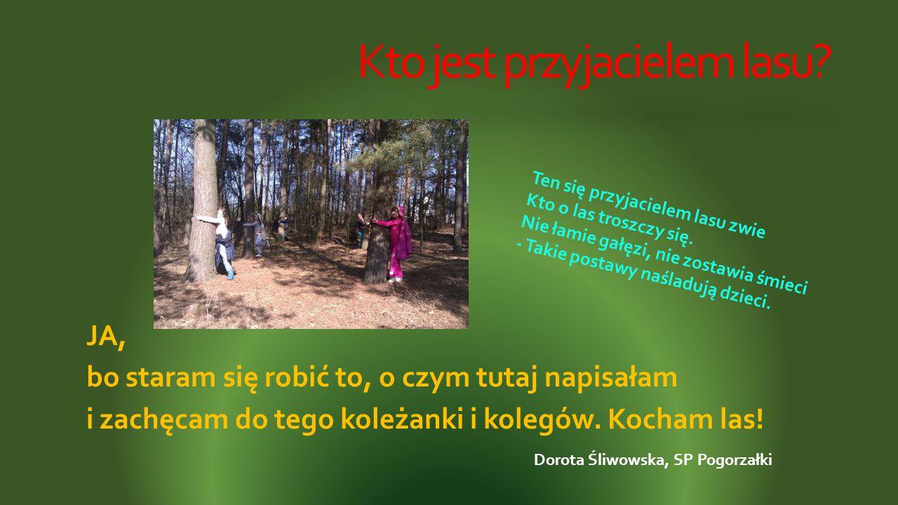 Kto jest przyjacielem lasu? JA, bo staram się robić to, o czym tutaj napisałam i zachęcam do tego koleżanki i kolegów. Kocham las! Ten się przyjaciele