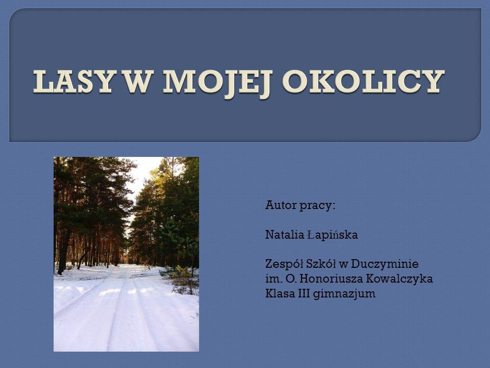 Autor pracy: Natalia Ł api ń ska Zespó ł Szkó ł w Duczyminie im.