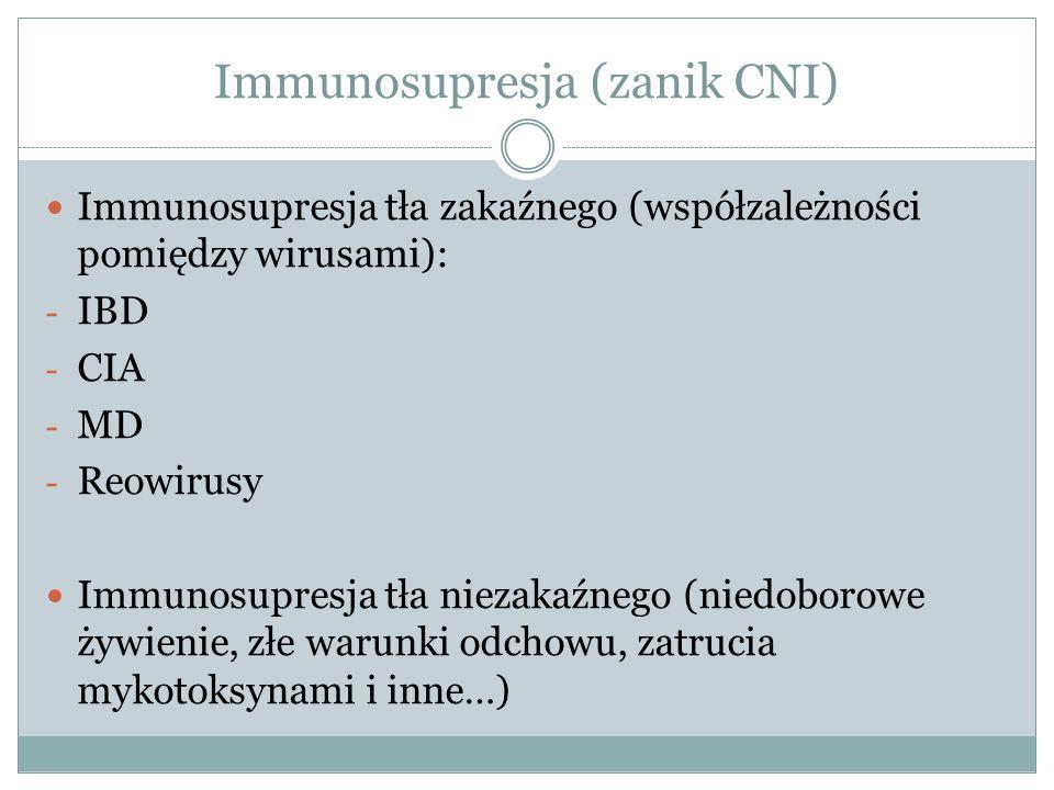 Immunosupresja (zanik CNI) Immunosupresja tła zakaźnego (współzależności pomiędzy wirusami): - IBD - CIA - MD - Reowirusy Immunosupresja tła niezakaźn