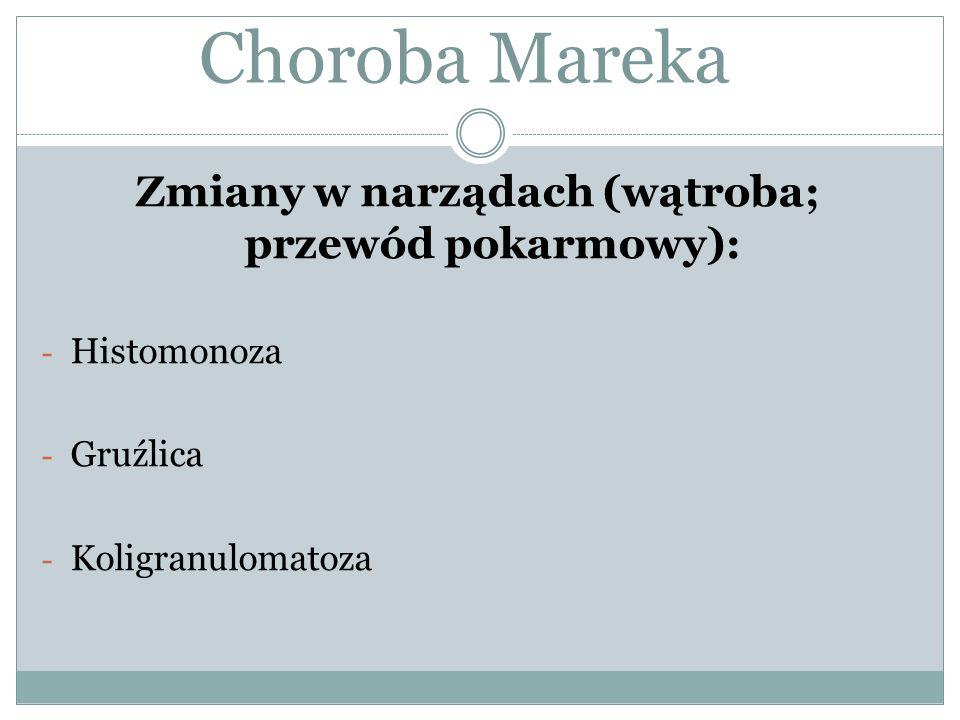 Zmiany w narządach (wątroba; przewód pokarmowy): - Histomonoza - Gruźlica - Koligranulomatoza Choroba Mareka