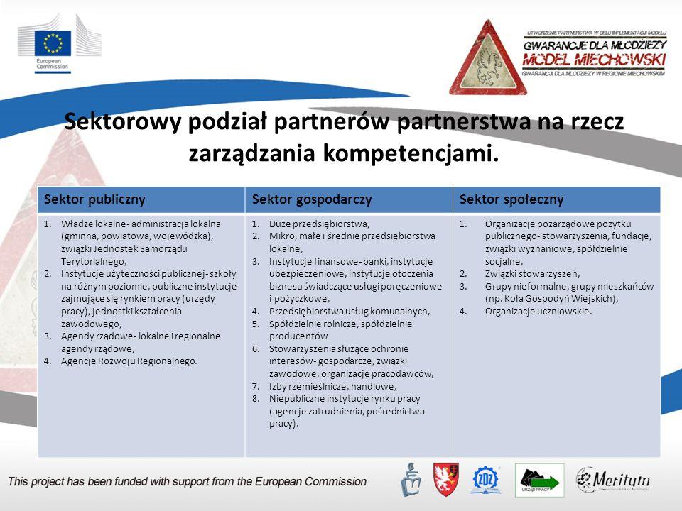 Etap inicjowania partnerstwa lokalnego na rzecz zarządzania kompetencjami (diagnoza społeczna c.d.) 7.