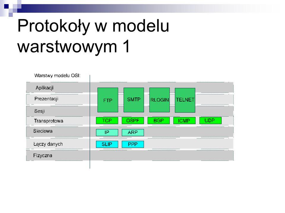Protokoły w modelu warstwowym 1