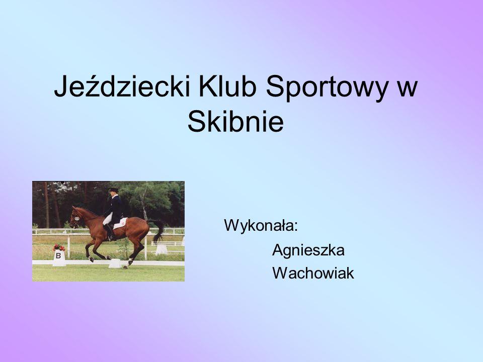 Jeździecki Klub Sportowy w Skibnie Wykonała: Agnieszka Wachowiak