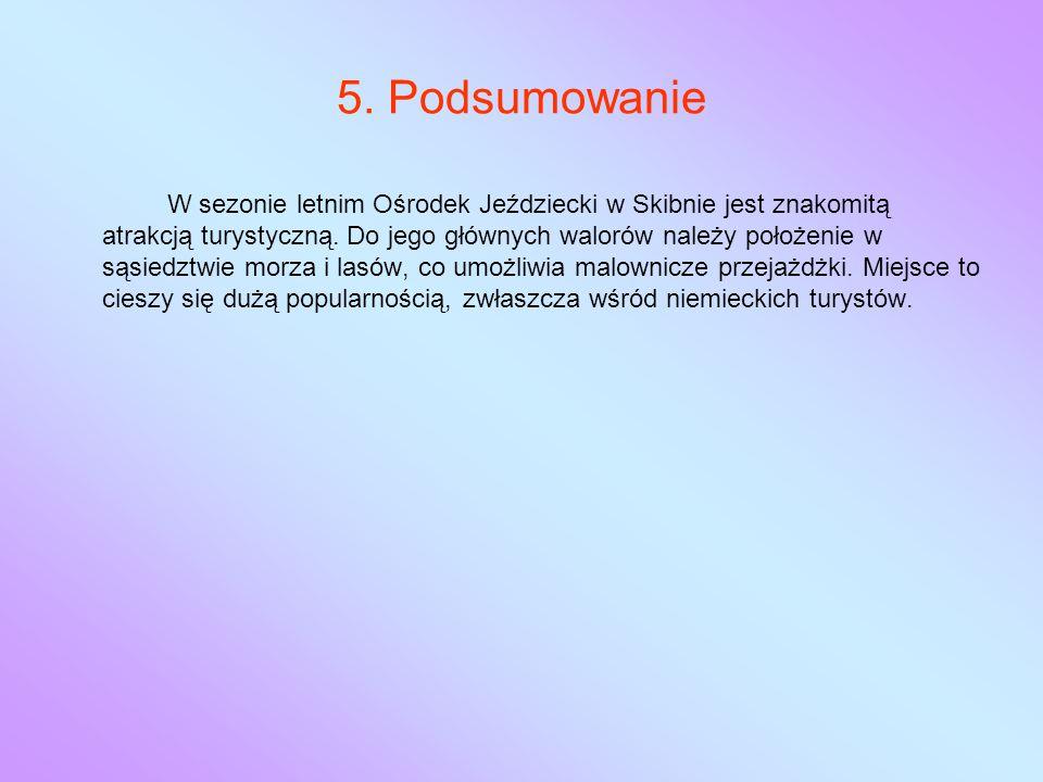 5. Podsumowanie W sezonie letnim Ośrodek Jeździecki w Skibnie jest znakomitą atrakcją turystyczną.