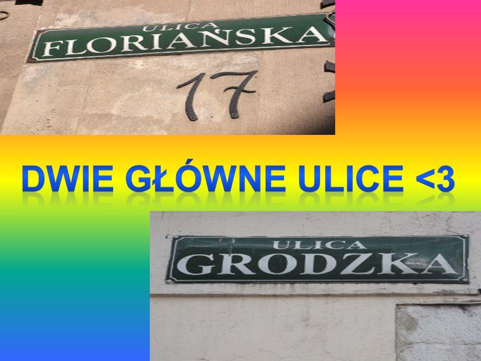 Pływanie jest bardzo rozpowszechnionym sportem w Krakowie.