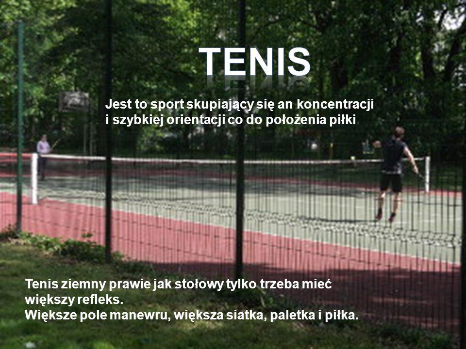 Tenis ziemny prawie jak stołowy tylko trzeba mieć większy refleks. Większe pole manewru, większa siatka, paletka i piłka. Jest to sport skupiający się