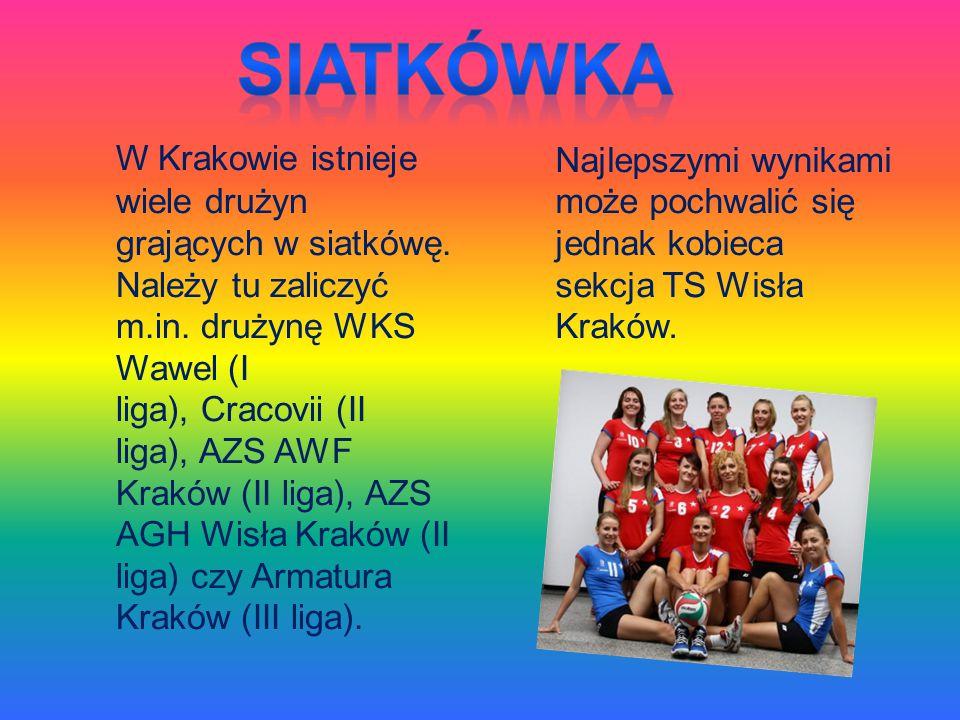 W Krakowie istnieje wiele drużyn grających w siatkówę. Należy tu zaliczyć m.in. drużynę WKS Wawel (I liga), Cracovii (II liga), AZS AWF Kraków (II lig