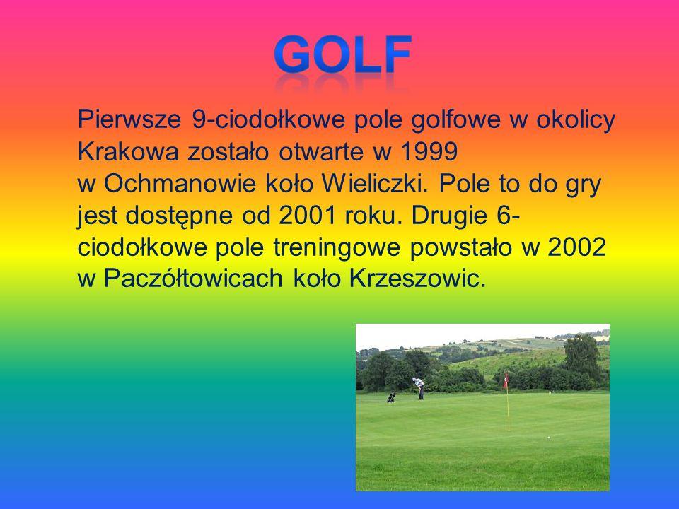 Pierwsze 9-ciodołkowe pole golfowe w okolicy Krakowa zostało otwarte w 1999 w Ochmanowie koło Wieliczki. Pole to do gry jest dostępne od 2001 roku. Dr