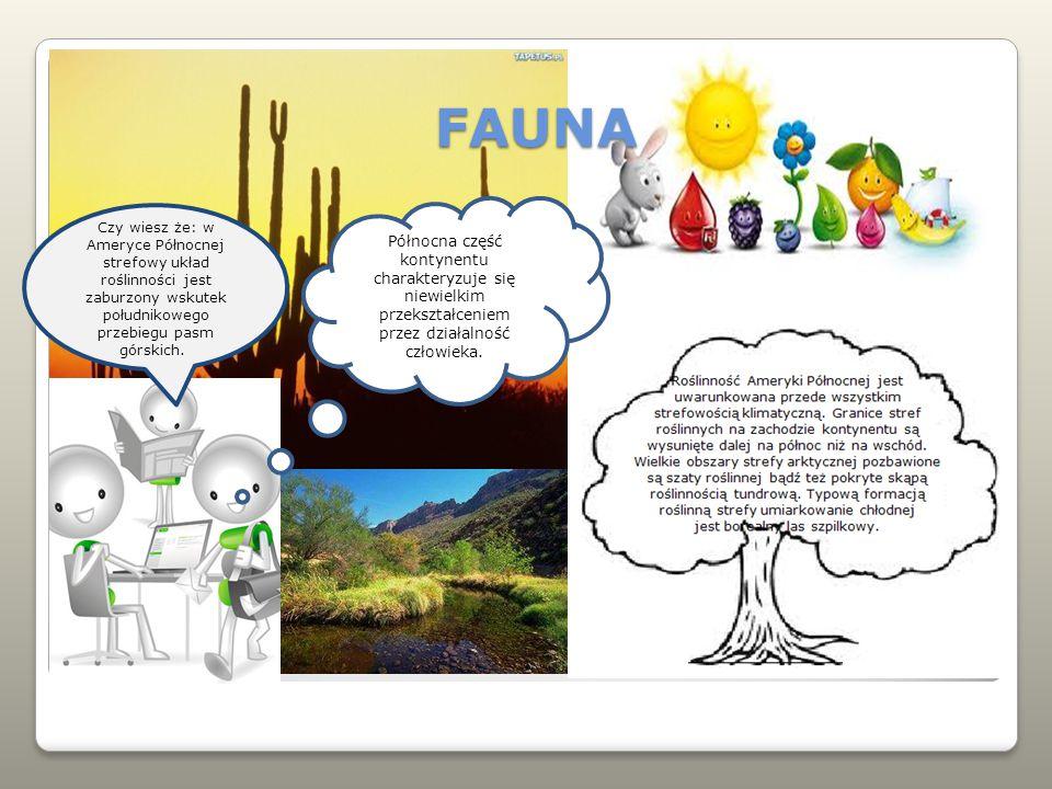 FAUNA Czy wiesz że: w Ameryce Północnej strefowy układ roślinności jest zaburzony wskutek południkowego przebiegu pasm górskich.