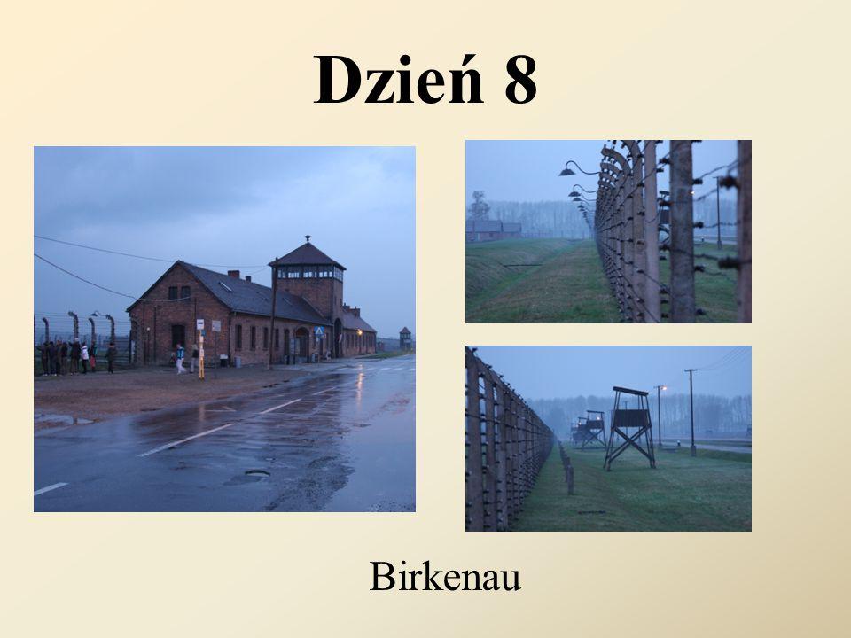 Dzień 8 Birkenau
