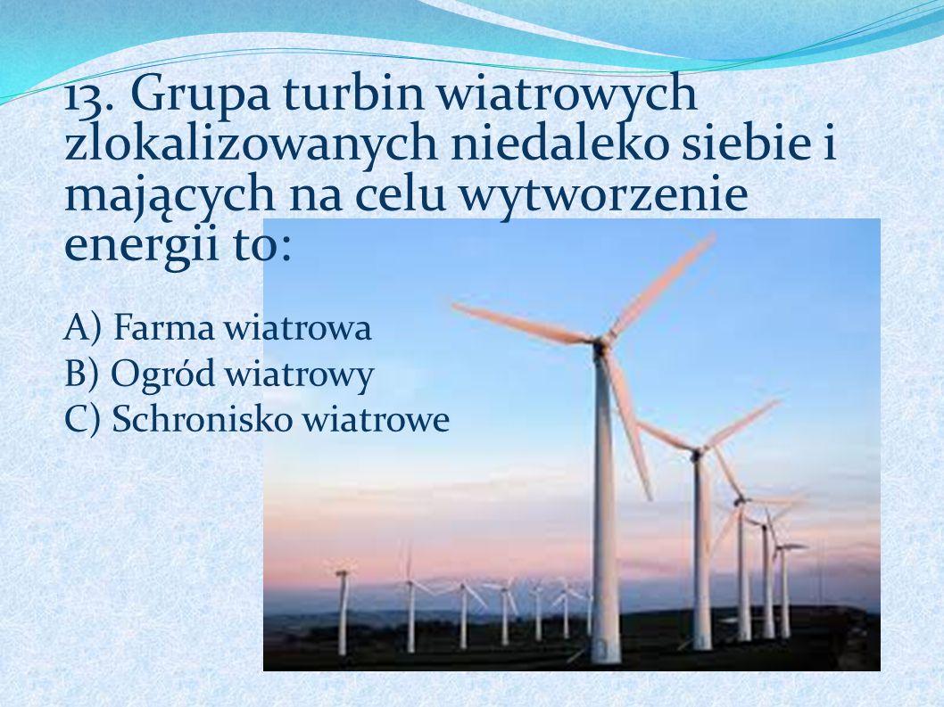 13. Grupa turbin wiatrowych zlokalizowanych niedaleko siebie i mających na celu wytworzenie energii to: A) Farma wiatrowa B) Ogród wiatrowy C) Schroni