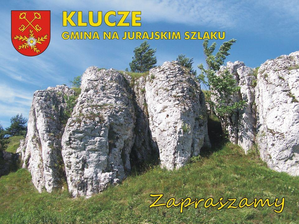 Gmina w liczbach Powierzchnia: 119 km 2 Liczba mieszkańców: ok.