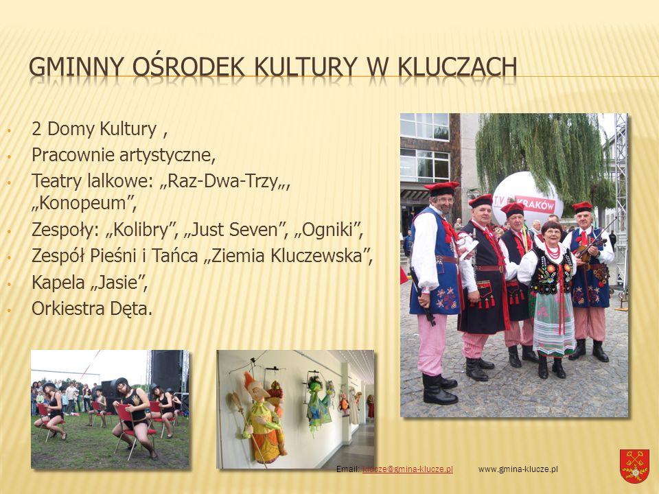 """2 Domy Kultury, Pracownie artystyczne, Teatry lalkowe: """"Raz-Dwa-Trzy"""", """"Konopeum"""", Zespoły: """"Kolibry"""", """"Just Seven"""", """"Ogniki"""", Zespół Pieśni i Tańca """""""