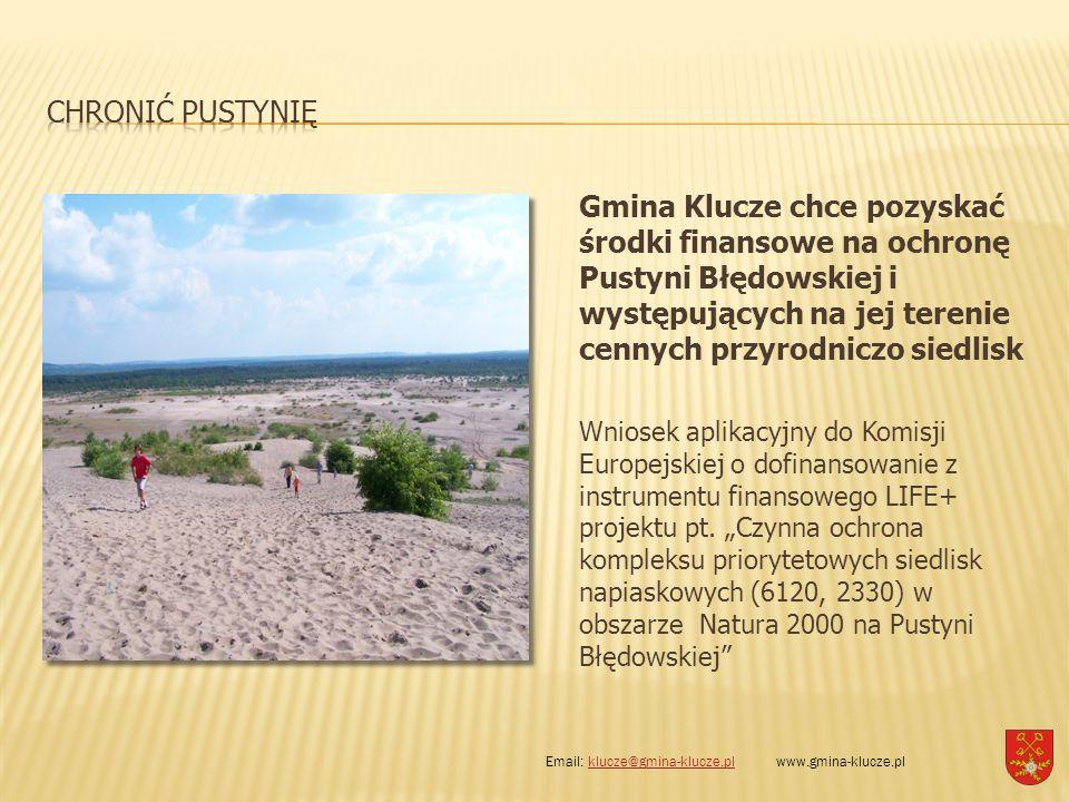 Gmina Klucze chce pozyskać środki finansowe na ochronę Pustyni Błędowskiej i występujących na jej terenie cennych przyrodniczo siedlisk Wniosek aplika