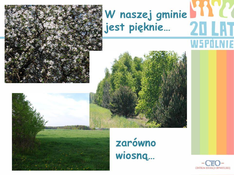 W naszej gminie jest pięknie… zarówno wiosną…