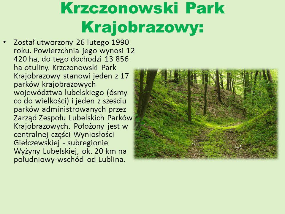 Krzczonowski Park Krajobrazowy: Został utworzony 26 lutego 1990 roku. Powierzchnia jego wynosi 12 420 ha, do tego dochodzi 13 856 ha otuliny. Krzczono