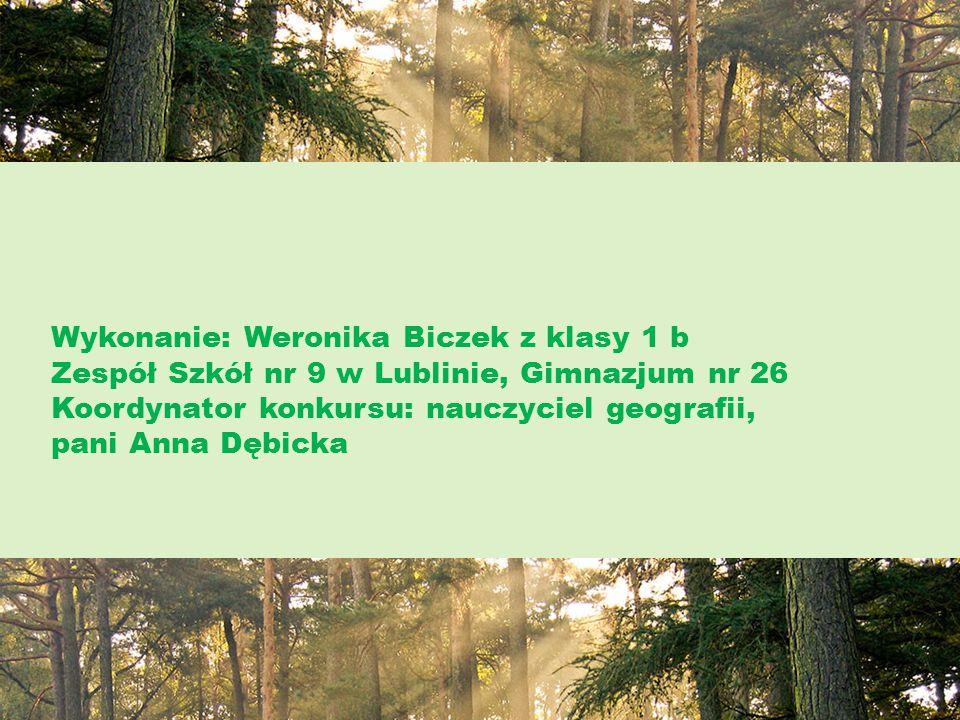 Wykonanie: Weronika Biczek z klasy 1 b Zespół Szkół nr 9 w Lublinie, Gimnazjum nr 26 Koordynator konkursu: nauczyciel geografii, pani Anna Dębicka