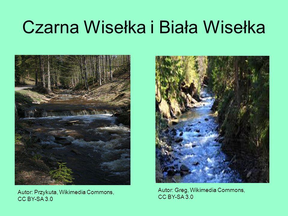 Czarna Wisełka i Biała Wisełka Autor: Przykuta, Wikimedia Commons, CC BY-SA 3.0 Autor: Greg, Wikimedia Commons, CC BY-SA 3.0