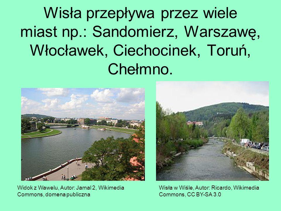 Wisła przepływa przez wiele miast np.: Sandomierz, Warszawę, Włocławek, Ciechocinek, Toruń, Chełmno. Widok z Wawelu, Autor: Jamal 2, Wikimedia Commons