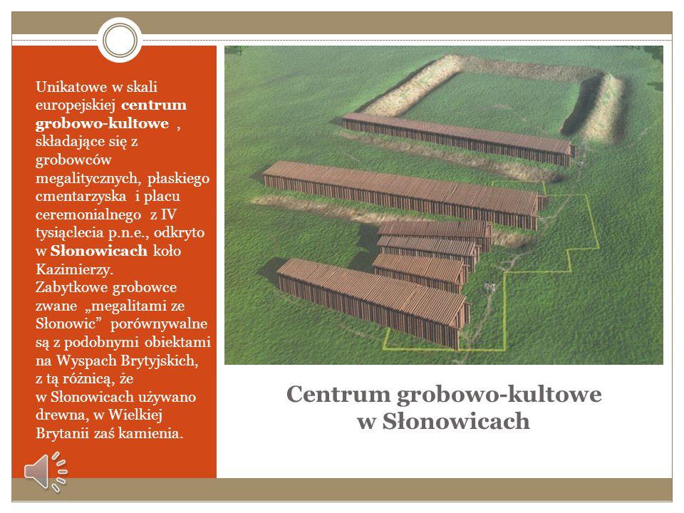 Pochówek o charakterze książęcym odkryty w Jakuszowicach W Jakuszowicach koło Kazimierzy dokonano odkrycia pochówka o charakterze książęcym. Zmarłym b