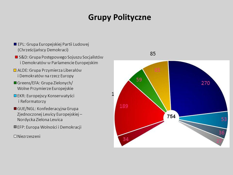 Grupy Polityczne EPL: Grupa Europejskiej Partii Ludowej (Chrześcijańscy Demokraci) S&D: Grupa Postępowego Sojuszu Socjalistów i Demokratów w Parlamenc