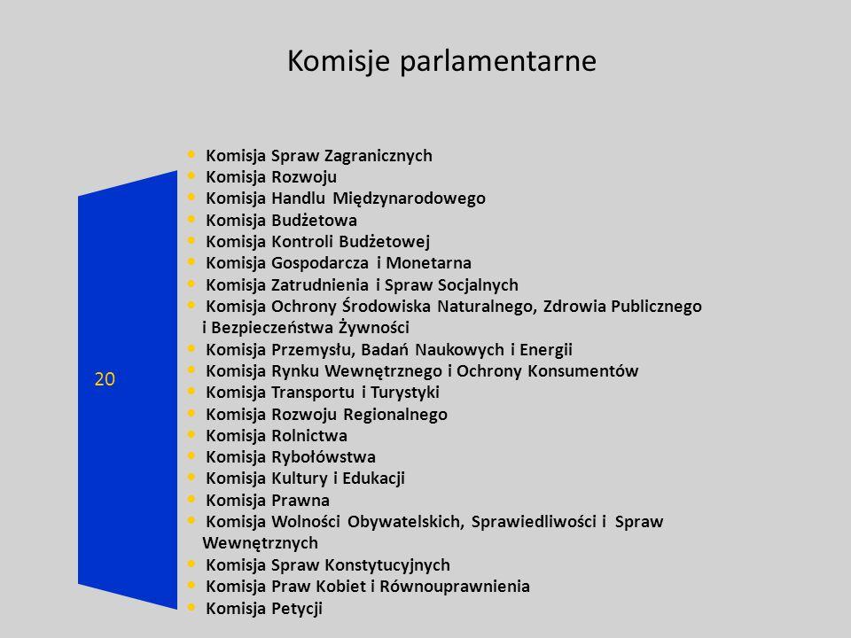 Komisje parlamentarne Komisja Spraw Zagranicznych Komisja Rozwoju Komisja Handlu Międzynarodowego Komisja Budżetowa Komisja Kontroli Budżetowej Komisj