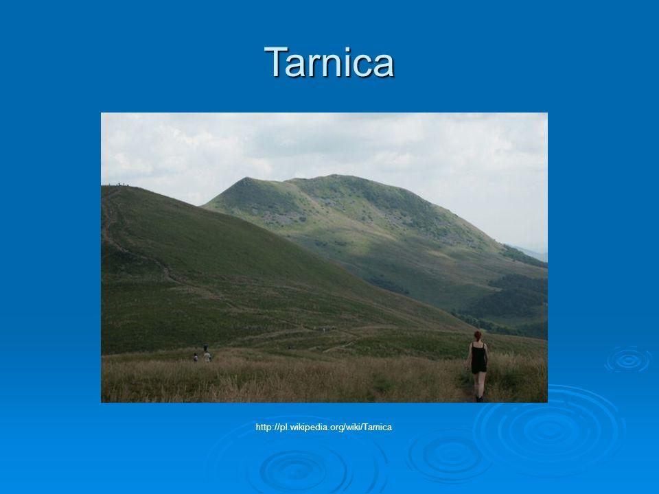 Tarnica http://pl.wikipedia.org/wiki/Tarnica