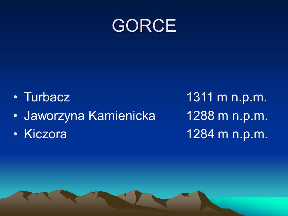 GORCE Turbacz1311 m n.p.m. Jaworzyna Kamienicka1288 m n.p.m. Kiczora1284 m n.p.m.