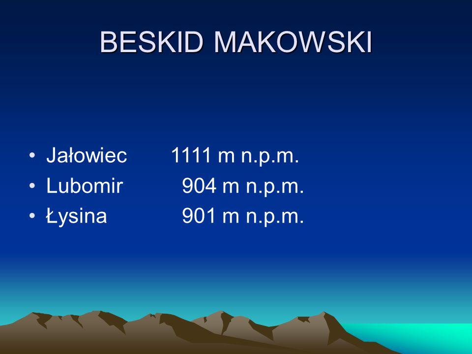 BESKID MAKOWSKI Jałowiec1111 m n.p.m. Lubomir 904 m n.p.m. Łysina 901 m n.p.m.