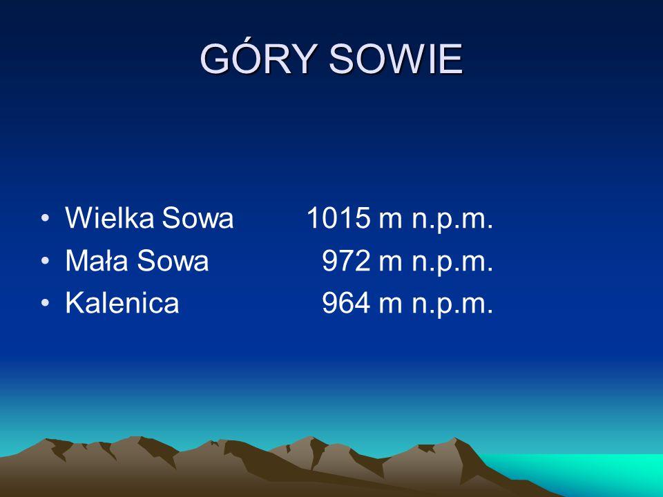 GÓRY SOWIE Wielka Sowa1015 m n.p.m. Mała Sowa 972 m n.p.m. Kalenica 964 m n.p.m.