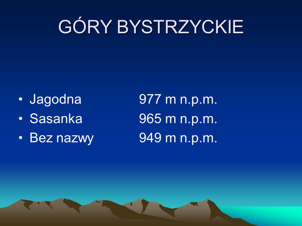 GÓRY BYSTRZYCKIE Jagodna977 m n.p.m. Sasanka965 m n.p.m. Bez nazwy949 m n.p.m.