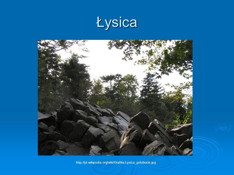 Łysica http://pl.wikipedia.org/wiki/Grafika:Lysica_goloborze.jpg