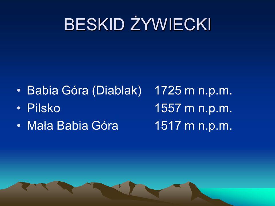 BESKID ŻYWIECKI Babia Góra (Diablak)1725 m n.p.m. Pilsko1557 m n.p.m. Mała Babia Góra1517 m n.p.m.