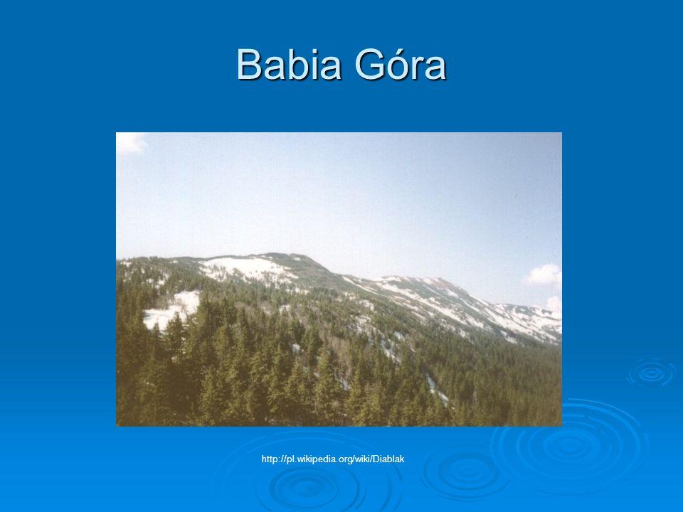 GÓRY ŚWIĘTOKRZYSKIE Łysica612 m n.p.m. Łysa Góra595 m n.p.m. Szczytniak554 m n.p.m.