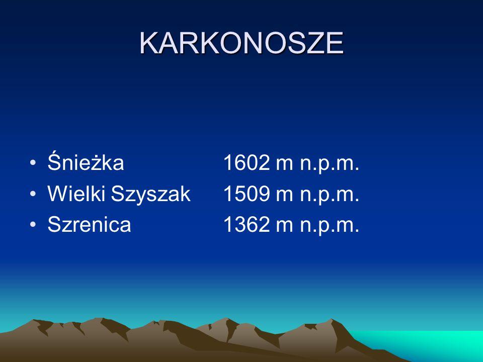 GÓRY KAMIENNE Waligóra936 m n.p.m. Suchawa928 m n.p.m. Szpiczak880 m n.p.m.