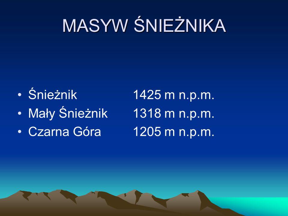 MASYW ŚNIEŻNIKA Śnieżnik1425 m n.p.m. Mały Śnieżnik1318 m n.p.m. Czarna Góra1205 m n.p.m.