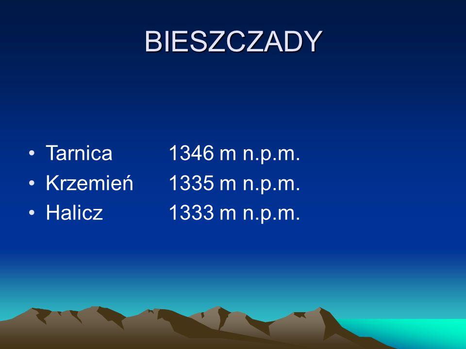 BIESZCZADY Tarnica1346 m n.p.m. Krzemień1335 m n.p.m. Halicz1333 m n.p.m.