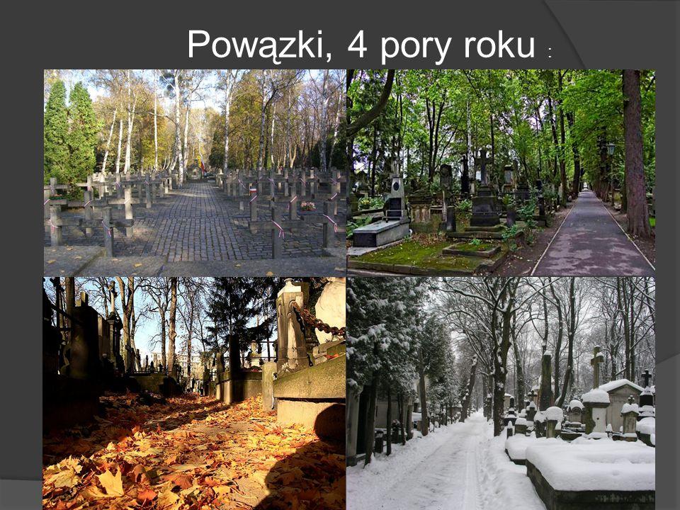 Powązki, 4 pory roku :