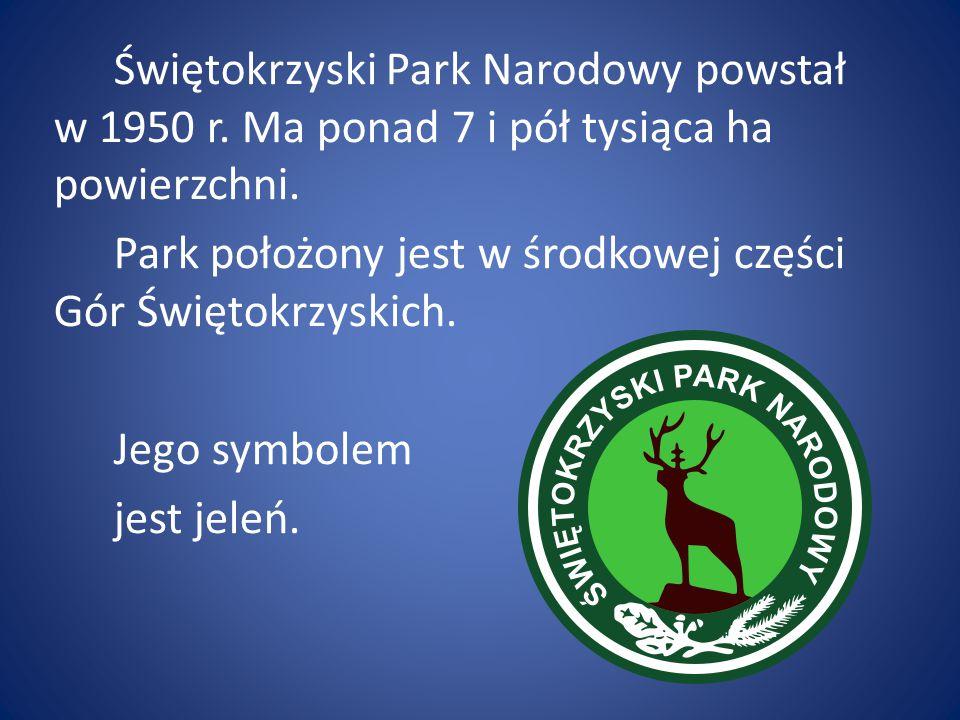 W Polsce mamy 23 parki narodowe.