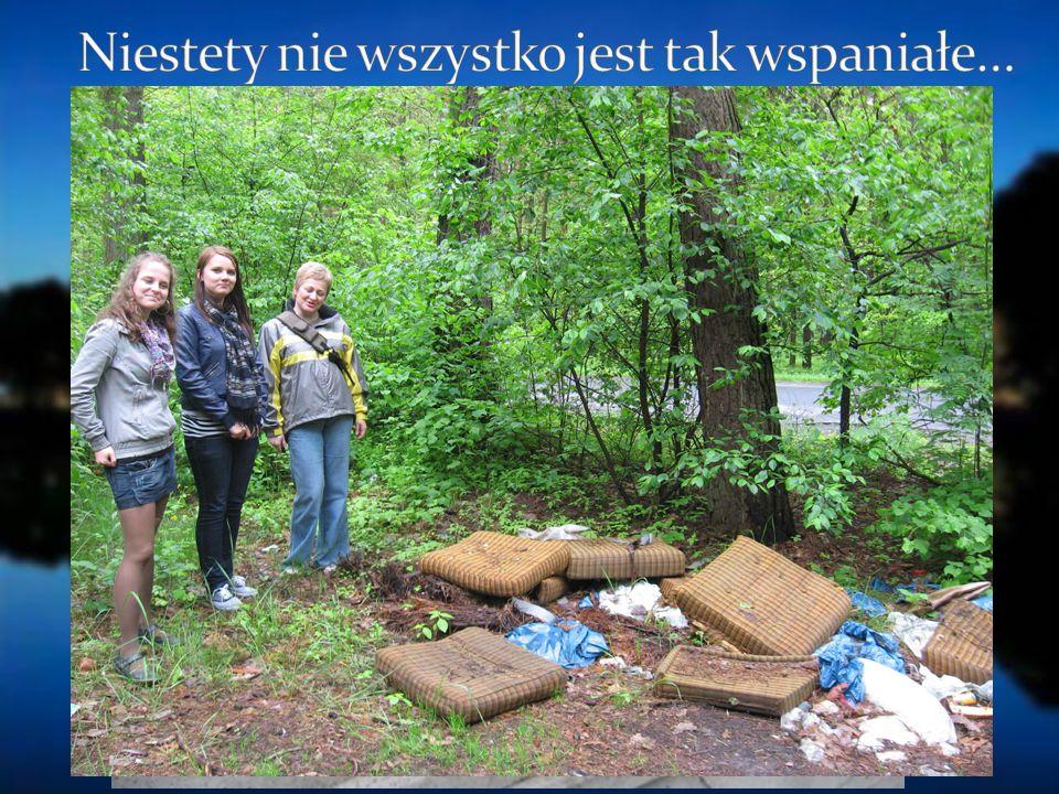 http://http://www.fmix.pl/zdjecie/450676/pb303378 http://www.olesnica.pl/index.php?id=200