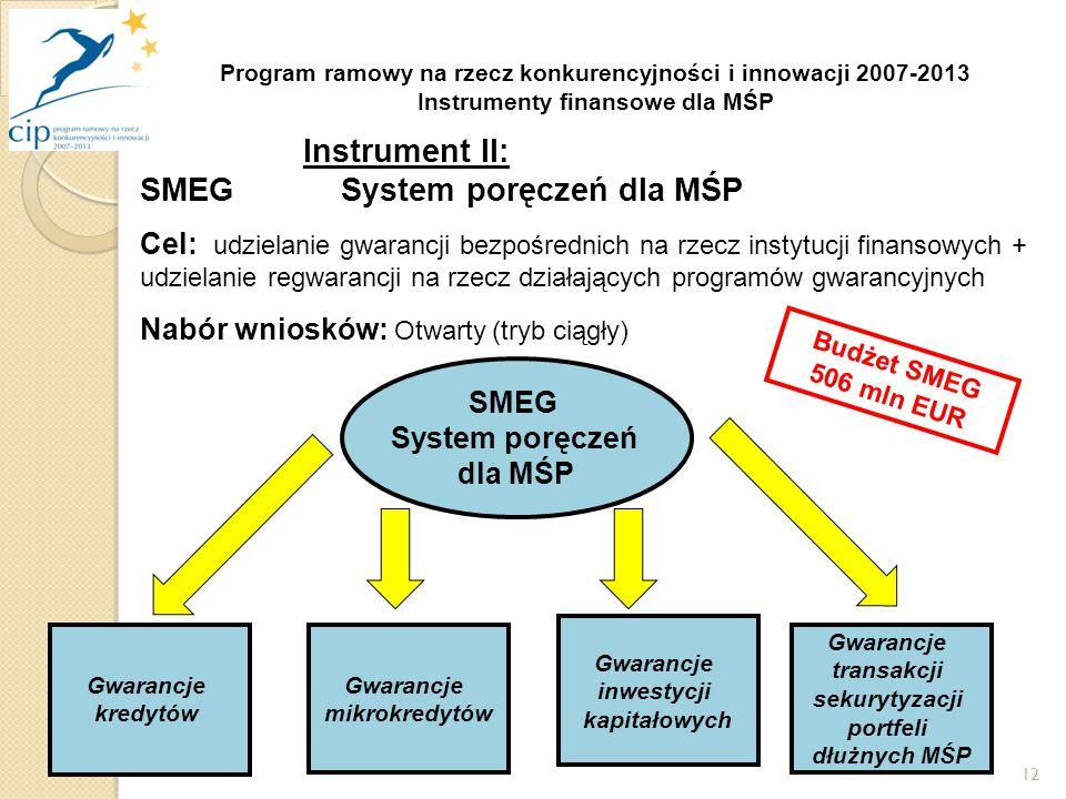 12 SMEG System poręczeń dla MŚP Gwarancje kredytów Budżet SMEG 506 mln EUR Gwarancje mikrokredytów Gwarancje inwestycji kapitałowych Gwarancje transakcji sekurytyzacji portfeli dłużnych MŚP Program ramowy na rzecz konkurencyjności i innowacji 2007-2013 Instrumenty finansowe dla MŚP Instrument II: SMEG System poręczeń dla MŚP Cel: udzielanie gwarancji bezpośrednich na rzecz instytucji finansowych + udzielanie regwarancji na rzecz działających programów gwarancyjnych Nabór wniosków: Otwarty (tryb ciągły)