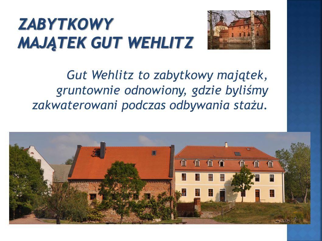 Gut Wehlitz to zabytkowy majątek, gruntownie odnowiony, gdzie byliśmy zakwaterowani podczas odbywania stażu.