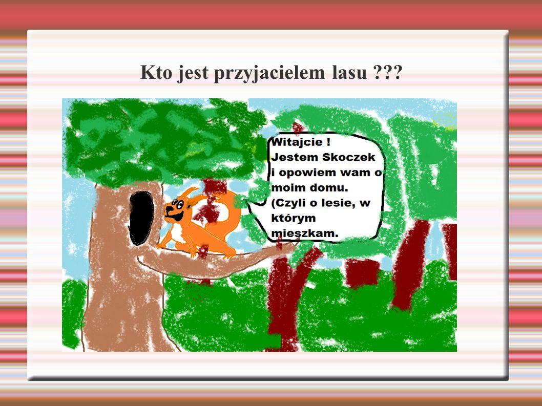 Leśnik jest głównym przyjacielem lasu.DLACZEGO ??.