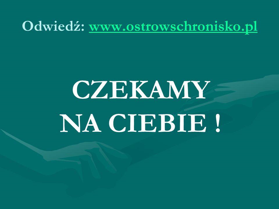 Odwiedź: www.ostrowschronisko.plwww.ostrowschronisko.pl CZEKAMY NA CIEBIE !
