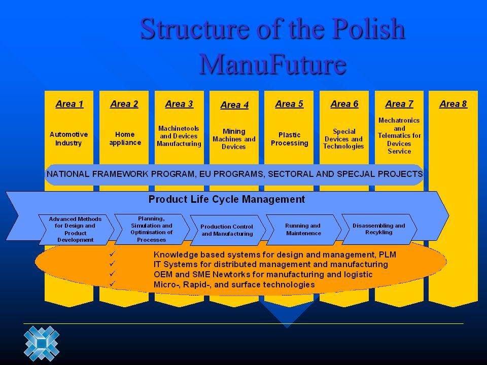 Structure of the Polish ManuFuture